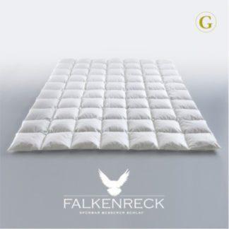 Falkenreck-Gold-Edition-Sommer