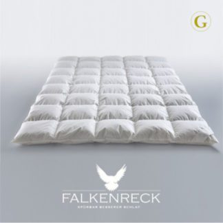 Falkenreck-Gold-Edition-Sommerhalbjahr