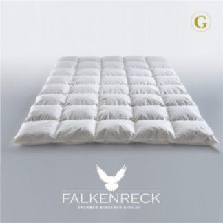 Falkenreck-Gold-Edition-Winterhalbjahr