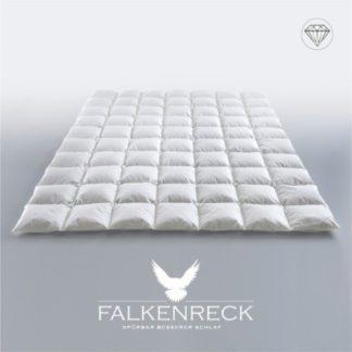 Falkenreck-Queen-Diamond-Sommer