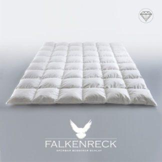Falkenreck-Queen-Diamond-Sommerhalbjahr