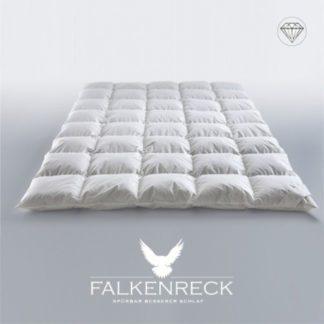 Falkenreck-Queen-Diamond-Winterhalbjahr