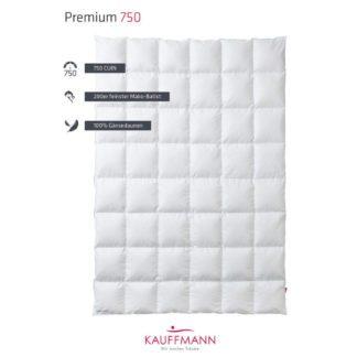 Kauffmann-Premium-750-Sommerhalbjahr