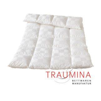 Traumina-Cube-Winterhalbjahr